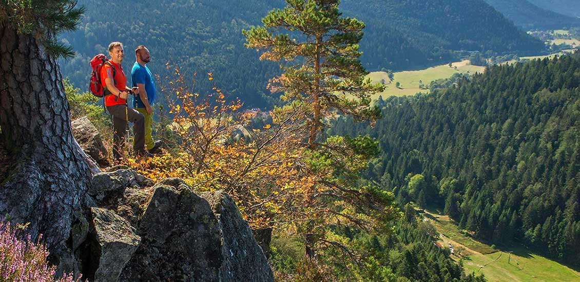 Bildsteinfelsen Dachsberg