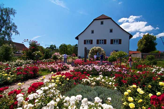 Tourist-Info Weilheim-Nöggenschwiel