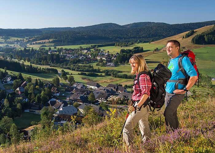 Tourist-Infos vor Ort Bild