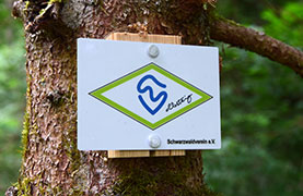 Wegzeichen Albsteig Schwarzwald