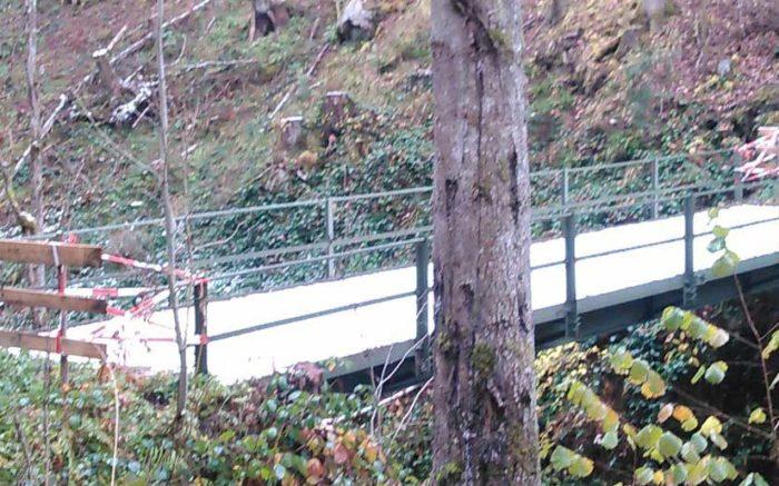 Renovierte Brücke am Wilfingersteg